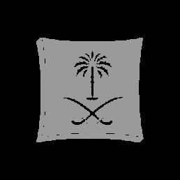 沙特阿拉伯工贸部 – MCI